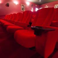 Palm Lake Resort Cinema - Alloyfold - Commercial Seating & Furniture